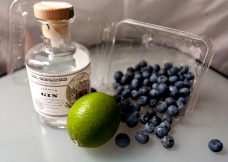 berries-lime-gin